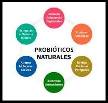 probióticos herbolario con vitamina c